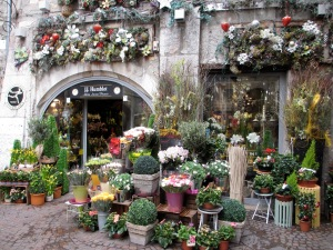 My all time favorite flower shop - Annecy, French Alps, April 2012