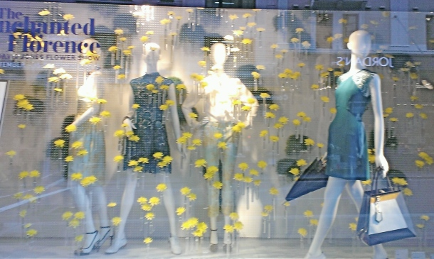 David Jones window 2