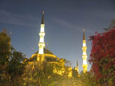 blue mosque istanbul at dusk with trees in the foreground