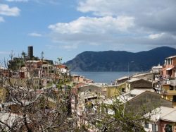 rooftops of Vernazza with the sea and a headland in the background