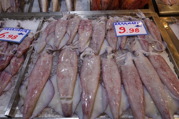 Rows of Greek squid