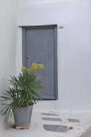 grey door with a pot plant in Anafiotika, Athens