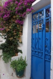 blue gate and vines in Anafiotika, Athens