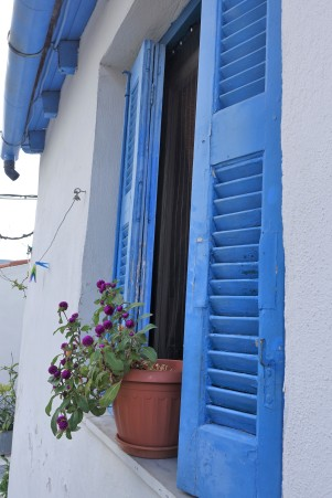 blue shutters and pot plant in Anafiotika, Athens