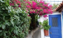 blue door and pink bougainvillea Anafiotika, Athens